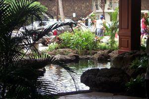 Waikiki_Banyan-2.jpg