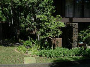 Sheehan_Residence-3912.jpg