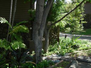 Sheehan_Residence-3933.jpg
