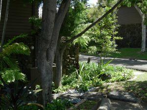 Sheehan_Residence-3934.jpg