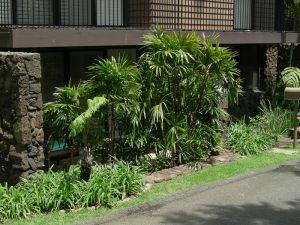 Sheehan_Residence-3940.jpg