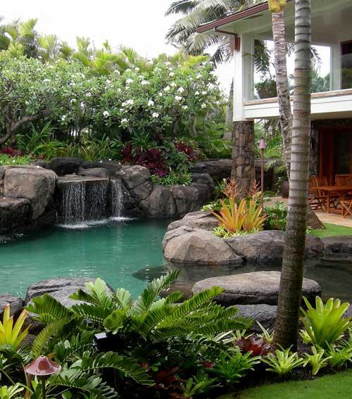 Tropical landscape design by DSS Associates.